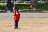 The Colonel's Review 2015. Horse Guards Parade, Westminster, London,  United Kingdom, on 06 June 2015 at 10:34, image #100