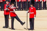 The Colonel's Review 2015. Horse Guards Parade, Westminster, London,  United Kingdom, on 06 June 2015 at 10:34, image #102