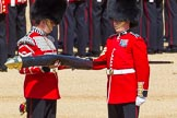 The Colonel's Review 2015. Horse Guards Parade, Westminster, London,  United Kingdom, on 06 June 2015 at 10:34, image #103