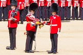 The Colonel's Review 2015. Horse Guards Parade, Westminster, London,  United Kingdom, on 06 June 2015 at 10:35, image #104