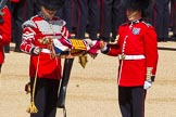The Colonel's Review 2015. Horse Guards Parade, Westminster, London,  United Kingdom, on 06 June 2015 at 10:35, image #105