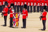 The Colonel's Review 2015. Horse Guards Parade, Westminster, London,  United Kingdom, on 06 June 2015 at 10:35, image #106