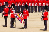 The Colonel's Review 2015. Horse Guards Parade, Westminster, London,  United Kingdom, on 06 June 2015 at 10:35, image #109