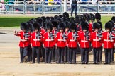 The Colonel's Review 2015. Horse Guards Parade, Westminster, London,  United Kingdom, on 06 June 2015 at 10:36, image #111