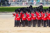 The Colonel's Review 2015. Horse Guards Parade, Westminster, London,  United Kingdom, on 06 June 2015 at 10:36, image #112