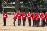 The Colonel's Review 2015. Horse Guards Parade, Westminster, London,  United Kingdom, on 06 June 2015 at 10:36, image #114
