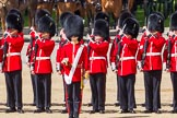 The Colonel's Review 2015. Horse Guards Parade, Westminster, London,  United Kingdom, on 06 June 2015 at 10:43, image #133