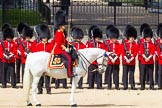 The Colonel's Review 2015. Horse Guards Parade, Westminster, London,  United Kingdom, on 06 June 2015 at 10:47, image #139