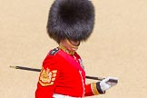 The Colonel's Review 2015. Horse Guards Parade, Westminster, London,  United Kingdom, on 06 June 2015 at 10:52, image #153