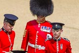 The Colonel's Review 2015. Horse Guards Parade, Westminster, London,  United Kingdom, on 06 June 2015 at 10:55, image #157