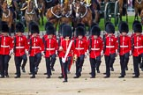 The Colonel's Review 2015. Horse Guards Parade, Westminster, London,  United Kingdom, on 06 June 2015 at 10:56, image #160