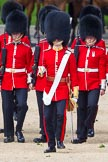 The Colonel's Review 2015. Horse Guards Parade, Westminster, London,  United Kingdom, on 06 June 2015 at 10:56, image #161