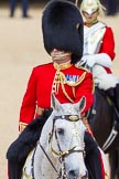 The Colonel's Review 2015. Horse Guards Parade, Westminster, London,  United Kingdom, on 06 June 2015 at 10:57, image #168