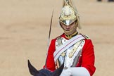 The Colonel's Review 2015. Horse Guards Parade, Westminster, London,  United Kingdom, on 06 June 2015 at 10:57, image #169