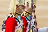 The Colonel's Review 2015. Horse Guards Parade, Westminster, London,  United Kingdom, on 06 June 2015 at 10:58, image #173