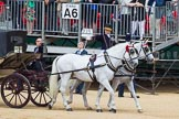 The Colonel's Review 2015. Horse Guards Parade, Westminster, London,  United Kingdom, on 06 June 2015 at 10:58, image #179