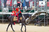 The Colonel's Review 2015. Horse Guards Parade, Westminster, London,  United Kingdom, on 06 June 2015 at 10:58, image #180