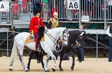 The Colonel's Review 2015. Horse Guards Parade, Westminster, London,  United Kingdom, on 06 June 2015 at 10:59, image #181