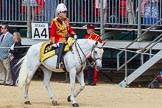 The Colonel's Review 2015. Horse Guards Parade, Westminster, London,  United Kingdom, on 06 June 2015 at 10:59, image #182