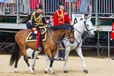 The Colonel's Review 2015. Horse Guards Parade, Westminster, London,  United Kingdom, on 06 June 2015 at 10:59, image #183