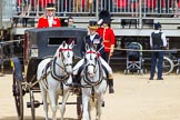 The Colonel's Review 2015. Horse Guards Parade, Westminster, London,  United Kingdom, on 06 June 2015 at 10:59, image #186
