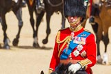 The Colonel's Review 2015. Horse Guards Parade, Westminster, London,  United Kingdom, on 06 June 2015 at 10:59, image #191