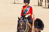 The Colonel's Review 2015. Horse Guards Parade, Westminster, London,  United Kingdom, on 06 June 2015 at 10:59, image #192