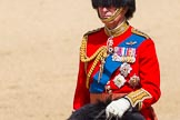 The Colonel's Review 2015. Horse Guards Parade, Westminster, London,  United Kingdom, on 06 June 2015 at 10:59, image #193