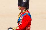 The Colonel's Review 2015. Horse Guards Parade, Westminster, London,  United Kingdom, on 06 June 2015 at 11:00, image #195