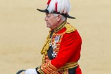 The Colonel's Review 2015. Horse Guards Parade, Westminster, London,  United Kingdom, on 06 June 2015 at 11:00, image #196