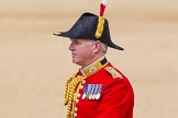 The Colonel's Review 2015. Horse Guards Parade, Westminster, London,  United Kingdom, on 06 June 2015 at 11:00, image #197