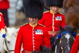 The Colonel's Review 2015. Horse Guards Parade, Westminster, London,  United Kingdom, on 06 June 2015 at 11:01, image #204