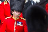 The Colonel's Review 2015. Horse Guards Parade, Westminster, London,  United Kingdom, on 06 June 2015 at 11:01, image #207