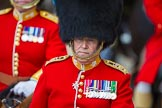 The Colonel's Review 2015. Horse Guards Parade, Westminster, London,  United Kingdom, on 06 June 2015 at 11:01, image #208