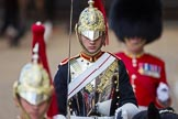 The Colonel's Review 2015. Horse Guards Parade, Westminster, London,  United Kingdom, on 06 June 2015 at 11:01, image #210