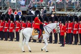 The Colonel's Review 2015. Horse Guards Parade, Westminster, London,  United Kingdom, on 06 June 2015 at 11:02, image #214