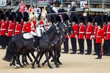 The Colonel's Review 2015. Horse Guards Parade, Westminster, London,  United Kingdom, on 06 June 2015 at 11:02, image #215