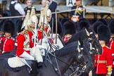 The Colonel's Review 2015. Horse Guards Parade, Westminster, London,  United Kingdom, on 06 June 2015 at 11:02, image #216