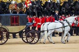 The Colonel's Review 2015. Horse Guards Parade, Westminster, London,  United Kingdom, on 06 June 2015 at 11:02, image #217