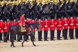The Colonel's Review 2015. Horse Guards Parade, Westminster, London,  United Kingdom, on 06 June 2015 at 11:02, image #218