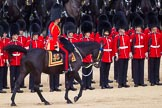 The Colonel's Review 2015. Horse Guards Parade, Westminster, London,  United Kingdom, on 06 June 2015 at 11:02, image #219