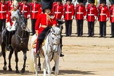 The Colonel's Review 2015. Horse Guards Parade, Westminster, London,  United Kingdom, on 06 June 2015 at 11:04, image #225