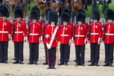 The Colonel's Review 2015. Horse Guards Parade, Westminster, London,  United Kingdom, on 06 June 2015 at 11:07, image #241