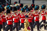 The Colonel's Review 2015. Horse Guards Parade, Westminster, London,  United Kingdom, on 06 June 2015 at 11:07, image #242