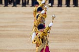 The Colonel's Review 2015. Horse Guards Parade, Westminster, London,  United Kingdom, on 06 June 2015 at 11:08, image #248