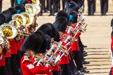 The Colonel's Review 2015. Horse Guards Parade, Westminster, London,  United Kingdom, on 06 June 2015 at 11:08, image #251