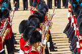 The Colonel's Review 2015. Horse Guards Parade, Westminster, London,  United Kingdom, on 06 June 2015 at 11:08, image #257