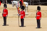 The Colonel's Review 2015. Horse Guards Parade, Westminster, London,  United Kingdom, on 06 June 2015 at 11:08, image #263