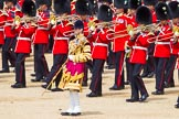 The Colonel's Review 2015. Horse Guards Parade, Westminster, London,  United Kingdom, on 06 June 2015 at 11:10, image #267