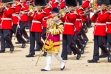The Colonel's Review 2015. Horse Guards Parade, Westminster, London,  United Kingdom, on 06 June 2015 at 11:10, image #268